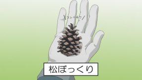 YuruCamp01_pinecone
